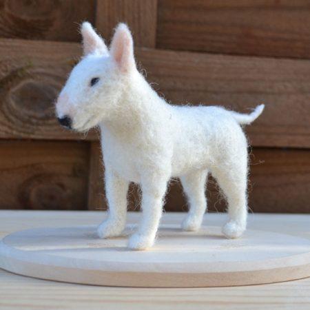 tűnemezelt miniatűr kutya