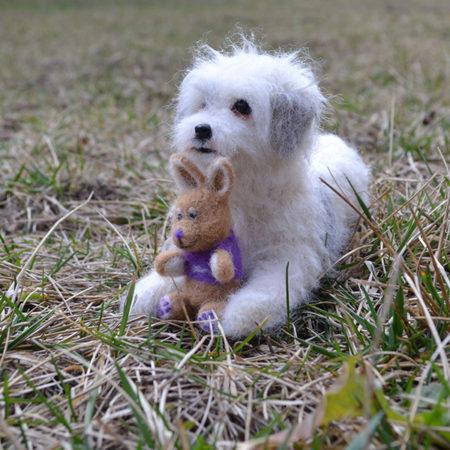 tűnemezelt hasaló kutya