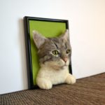 tűnemezelt cica portré2