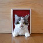 tűnemezelt macska2