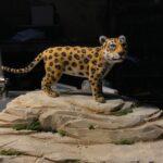 tunemezelt jaguar